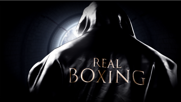 Real Boxing - iOS (iPhone, iPad, iPod touch)