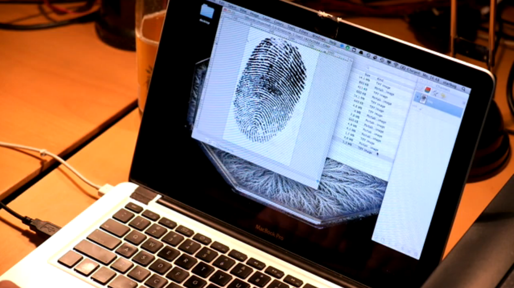 Touch ID hacking