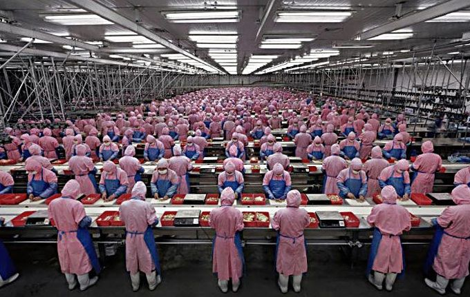 Foxconn - iPhone 5