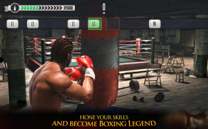 Real Boxing (OS X)